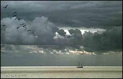 Seascape Photograph - 02-005 by PJ Steinmeijer