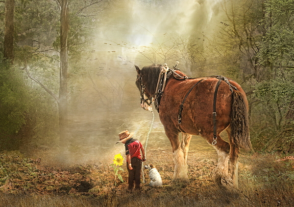 Horse Photograph -  The Seeds We Sow by Trudi Simmonds
