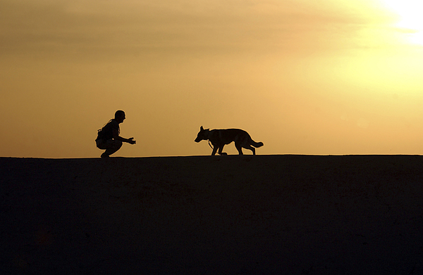 Operation Iraqi Freedom Photograph - A Military Working Dog And His Handler by Stocktrek Images