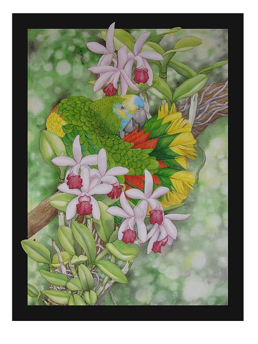 Orchids Painting - Amazon 3 by Darren James Sturrock