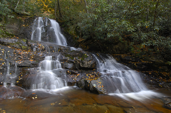 Laurel Falls Photograph - Autumn At Laurel Falls by Darrell Young