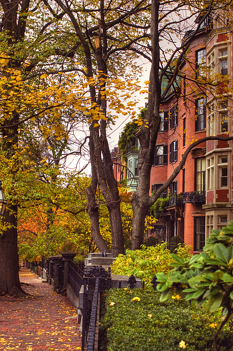 Beacon Hill Photograph - Beacon Hill by Joann Vitali