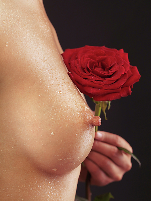 Breast Photograph - Beautiful Woman Breast And A Red Rose by Oleksiy Maksymenko