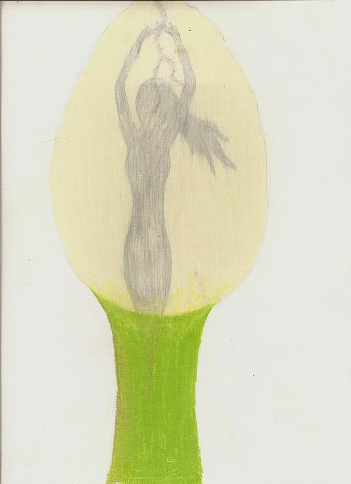 Hatching Drawing - Becoming Me by Syvanah  Bennett