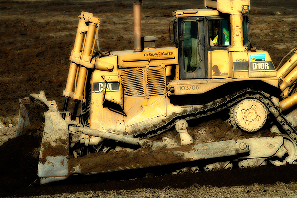 Dreamy Photograph - Cat Bulldozer . 7d10945 by Wingsdomain Art and Photography