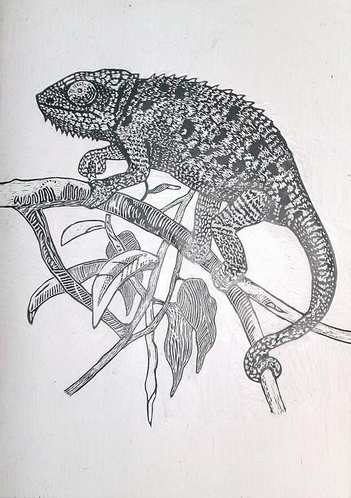 Chameleon Mixed Media - Chameleon by Chris Hedges