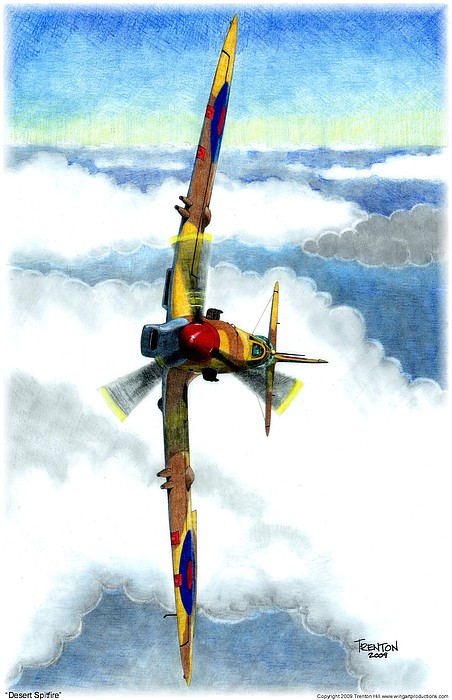 Aircraft Drawing - Desert Spitfire by Trenton Hill
