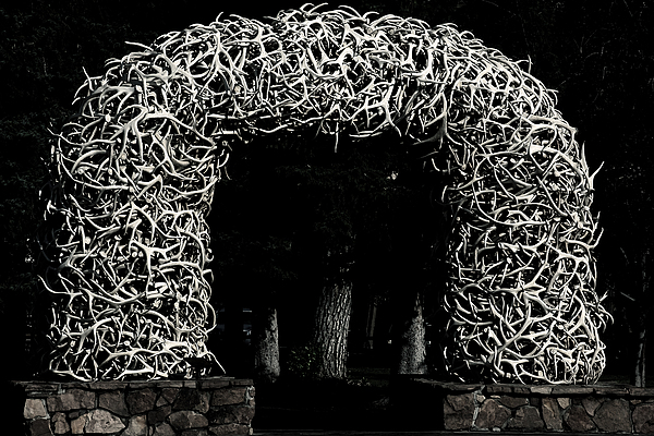 Jackson Hole Wyoming Photograph - Elk Antlers Gate Jackson Hole Wy by Christine Till