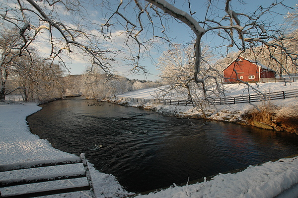 Landscape Photograph - First Snow by William A Lopez