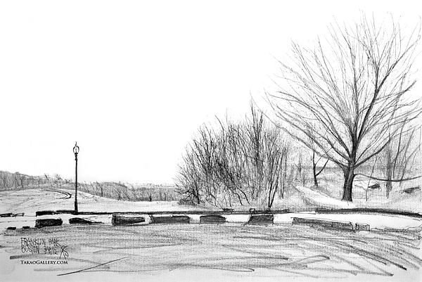 Franklin Park Drawing by Takao Shinzawa