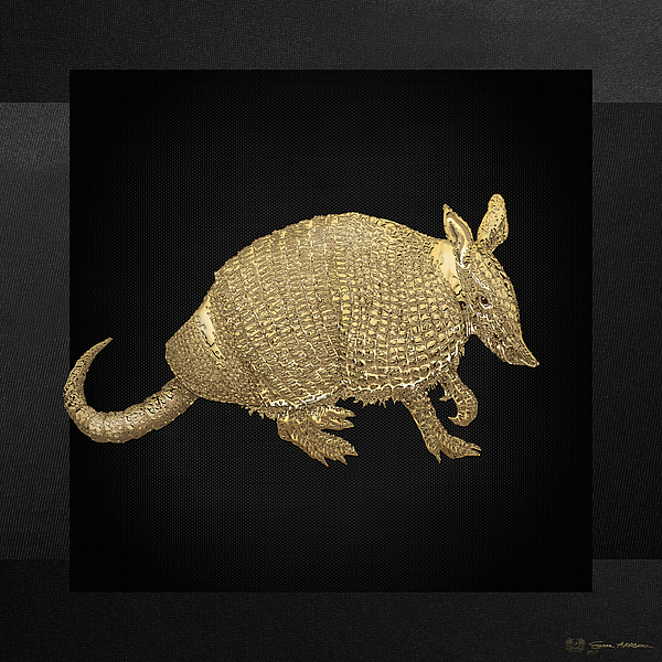Animal Photograph - Gold Armadillo On Black Canvas by Serge Averbukh