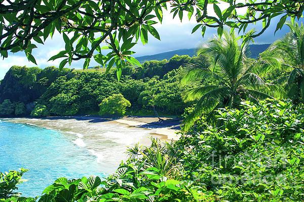 Hamoa Beach Hana Maui Hawaii Photograph