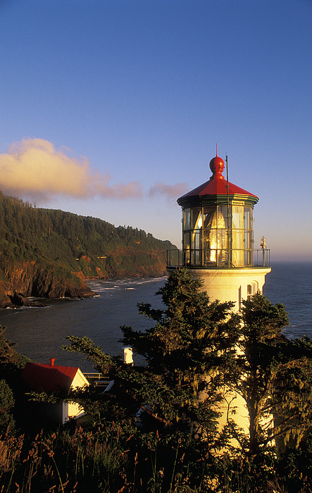 Afternoon Photograph - Heceta Head Lighthouse by Greg Vaughn - Printscapes