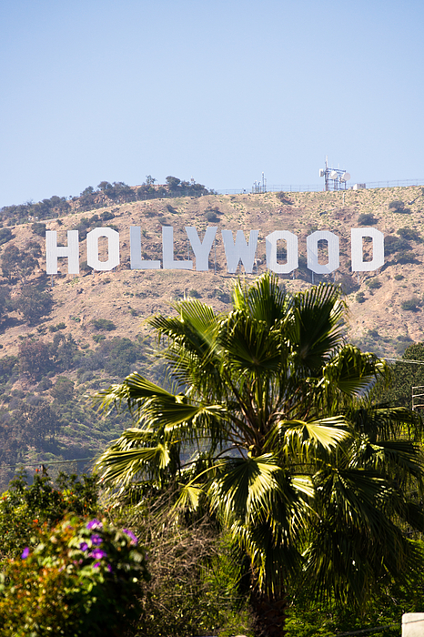 America Photograph - Hollywood Sign Photo by Paul Velgos