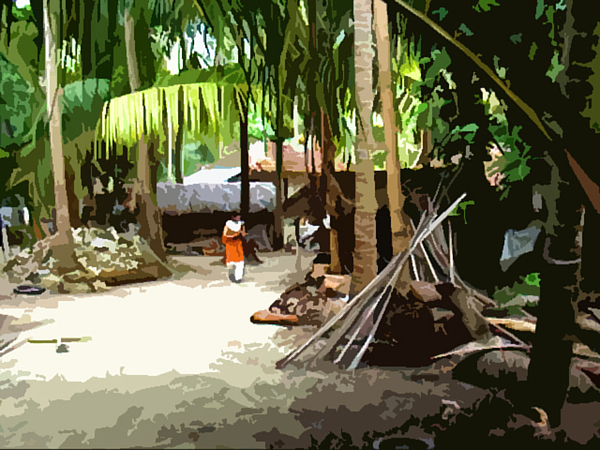 Lakshwadeep Photograph - Lakshadweep Village by Padamvir Singh