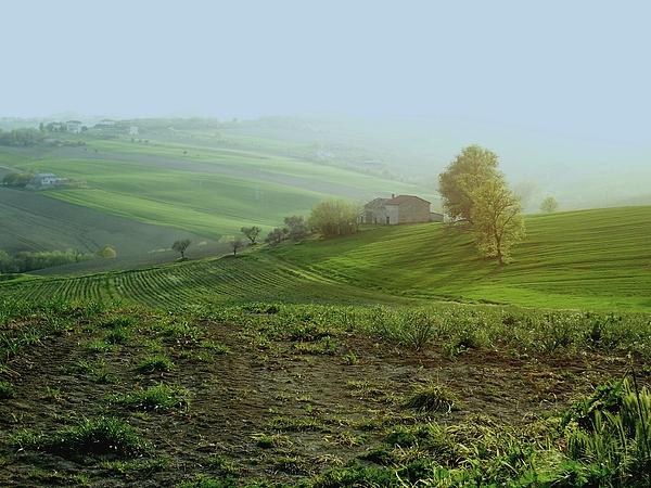 Hills Photograph - Luce Su Colline by Alberto V  Donati