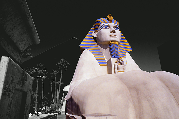 Travel Photograph - Luxor Sphynx by Tom Fant