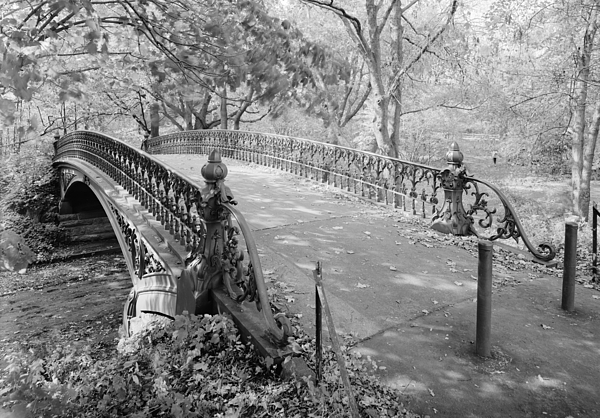 1980s Photograph - New York City, Central Park, Bridge by Everett