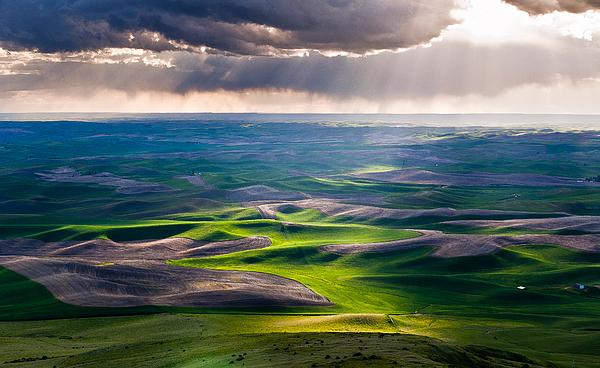 Palouse Hills Photograph By Niels Nielsen