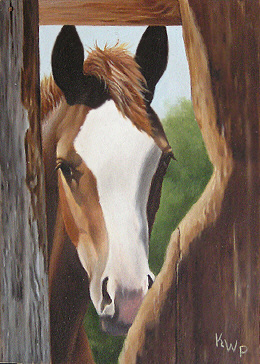 Horse Painting - Peek A Boo by Kelley Patterson