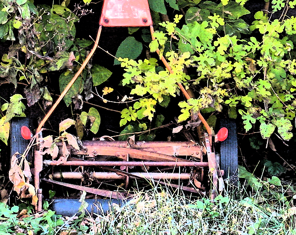 Nature Photograph - Push Mower by Gary Everson