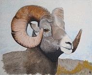 Ram 3 Painting by AL Borrego