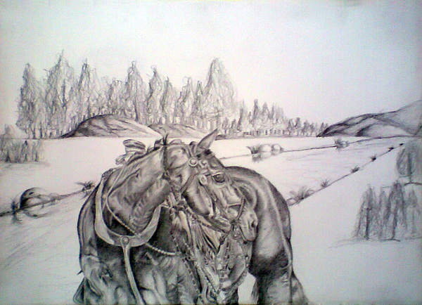 Horse Drawing - Ready To Work by Bhupinder Singh