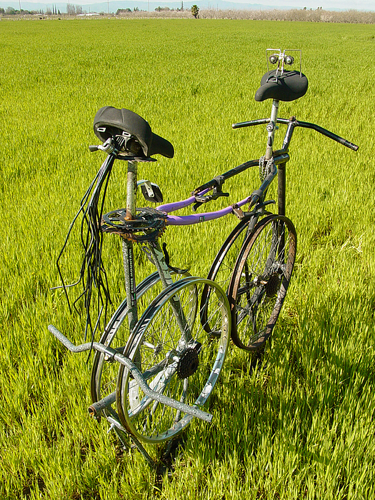 Bicycle Sculpture - Recycled Love by Steve Mudge