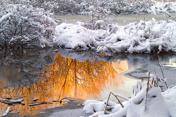 Reflections Photograph - Reflections In Melting Snow by Neil Doren