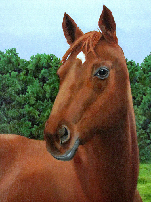 Horse Painting - Retired Racer by Sandra Chase