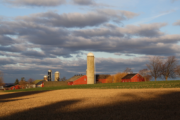 Evening Photograph - Shades Of Evening by Doug Hoover