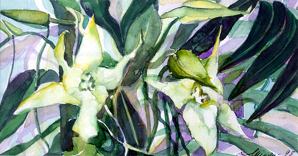 Orchids Painting - Spider Orchids by Mindy Newman