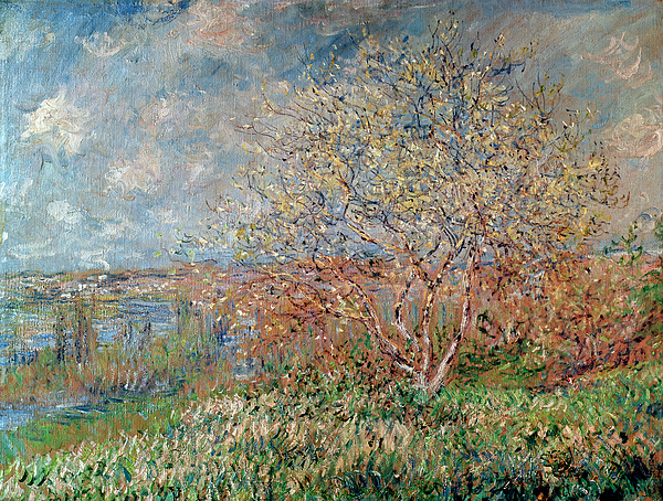 Impressionist Painting - Spring by Claude Monet