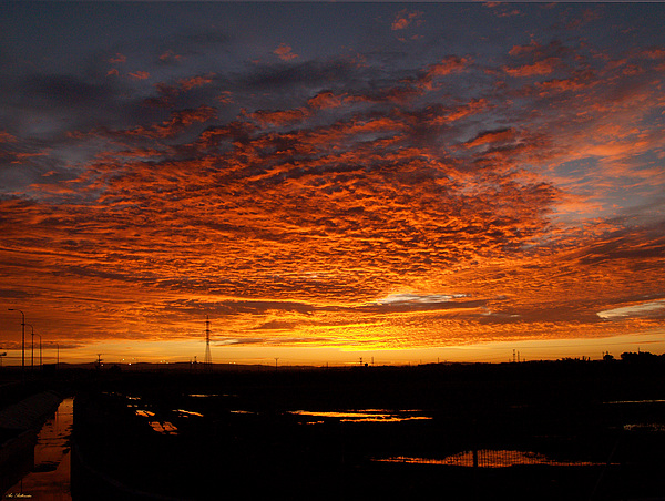 Sunrise Photograph - Sunrise by Arik Baltinester