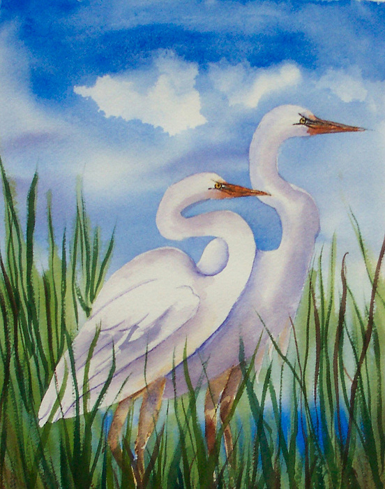 Egrets Painting - Twin Egrets by Ruth Bevan