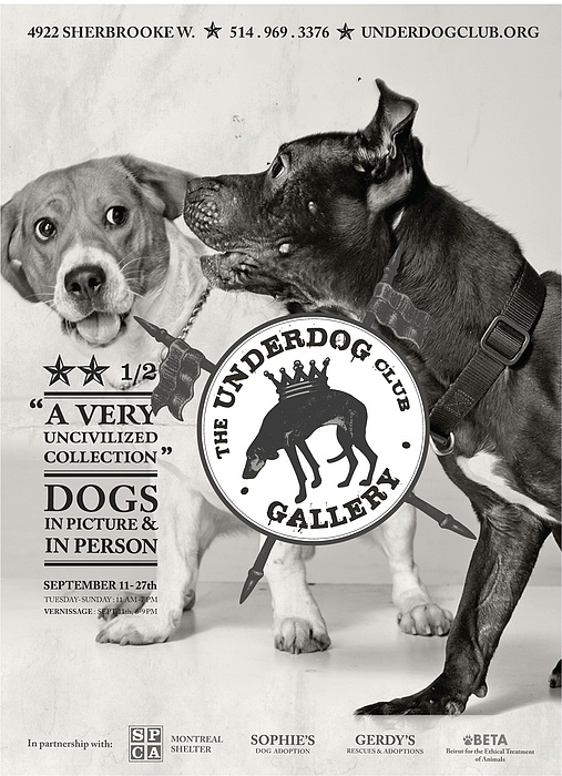 Dogs Photograph - Underdogs - Uncivilized by Anonymous