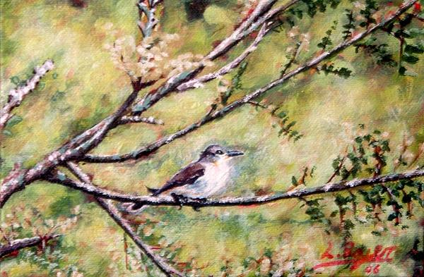 Bird Painting - Untitled by Lowell Royer