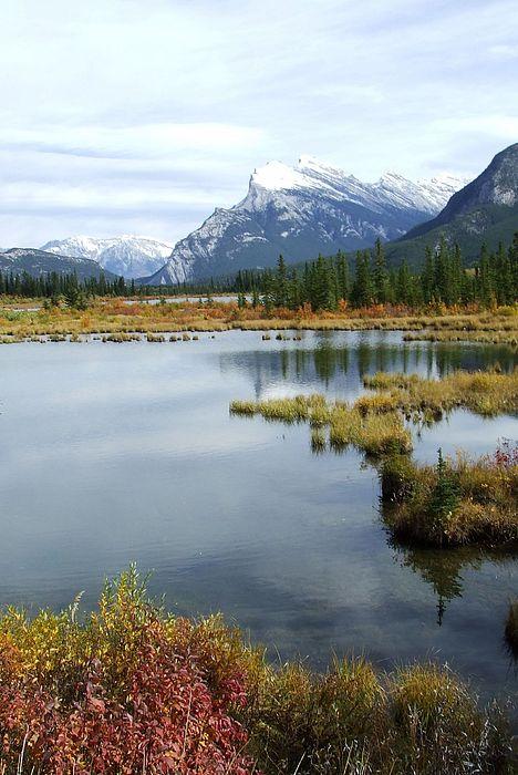 Banff National Park Photograph - Vermillion Lakes by Tiffany Vest