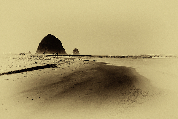 Vintage Photograph - Walking The Beach by David Patterson