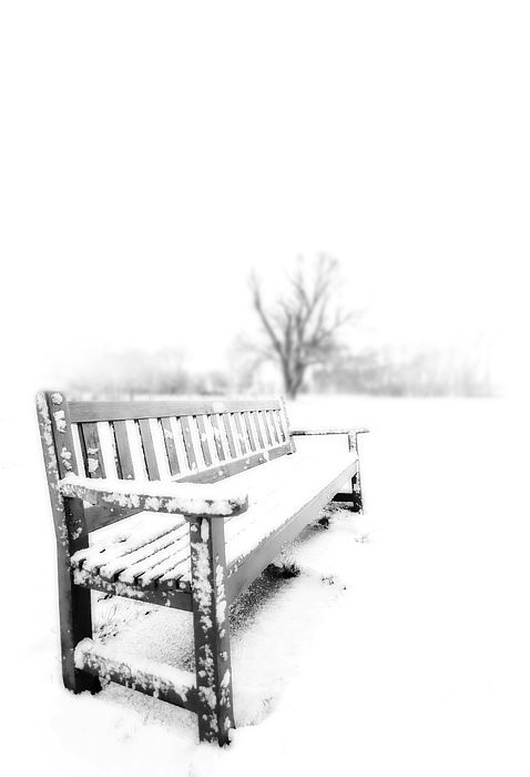Winter Photograph - Winter Time by Svetlana Sewell