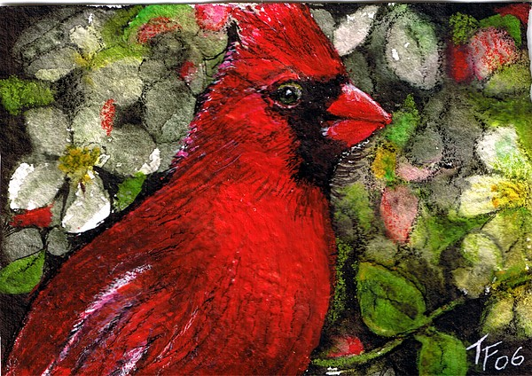 Cardinal Painting - Winterbird by Terri Kilpatrick