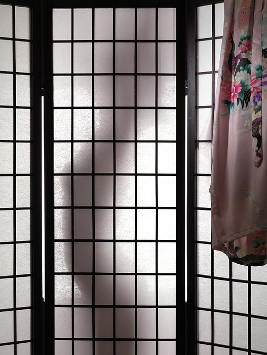 Undressing Photograph - Woman Behind Shoji Screen by Oleksiy Maksymenko