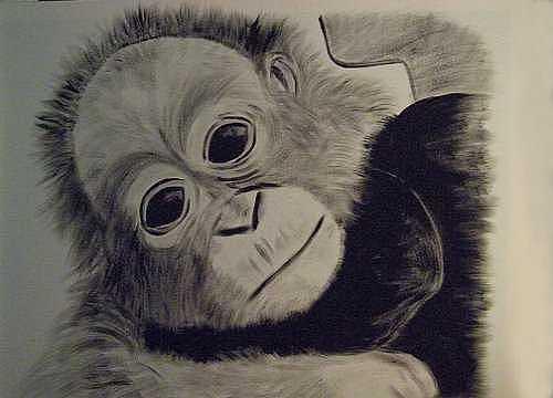 Baboon Painting - Baa-boon by Al Borrego