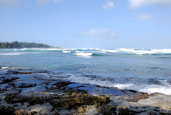 Seascape Photograph - Hawaii by Thea Wolff