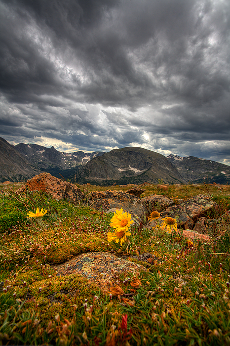 Clouds Photograph - 12000 Foot Flower by Peter Tellone