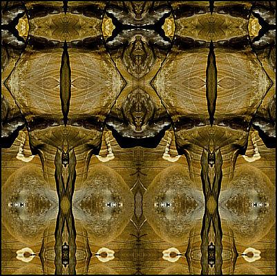Sandstone Photograph - Untitled by Daniel G Walczyk