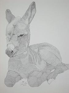 Limited Edition Drawing - Bunkys Baby by Joanie Arvin