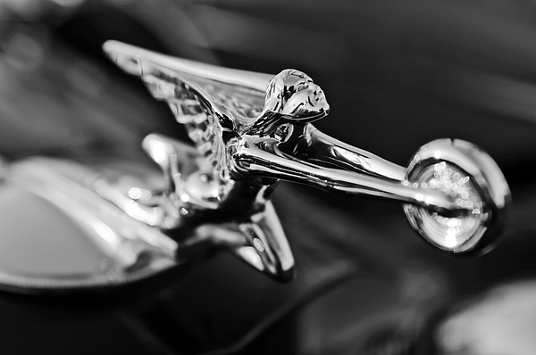 Black And White Photograph - 1934 Packard Hood Ornament 2 by Jill Reger
