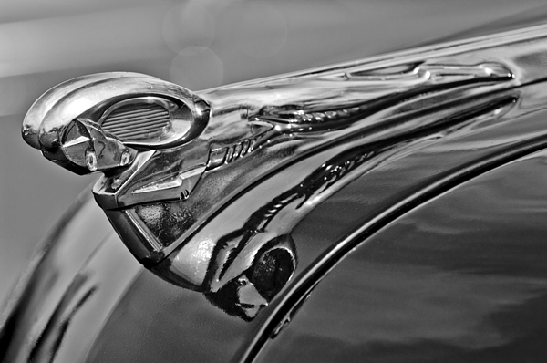 Ram Photograph - 1951 Dodge Pilot House Pickup Hood Ornament 2 by Jill Reger
