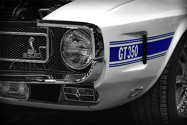 1969 Ford Mustang Shelby Gt350 1970 By Gordon Dean Ii